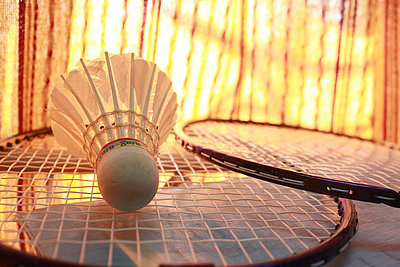 Badminton in Hof