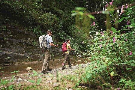 Wandern und Wanderwege im Ostallgäu