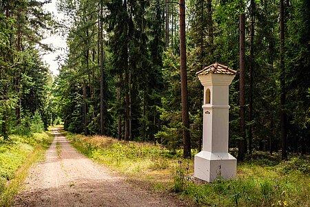 Waldsassen Waldweg