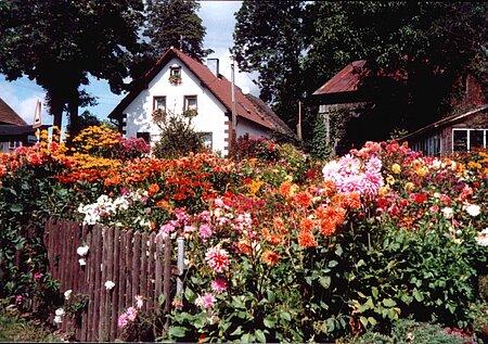 Stammbach Dorfhaus