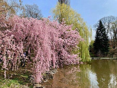 Tierpark Röhrensee in Bayreuth
