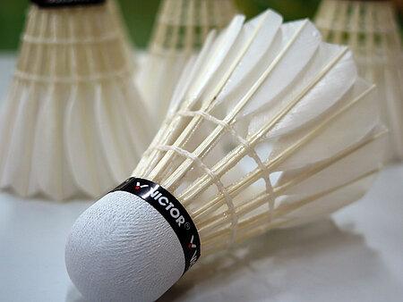 Badminton in Augsburg