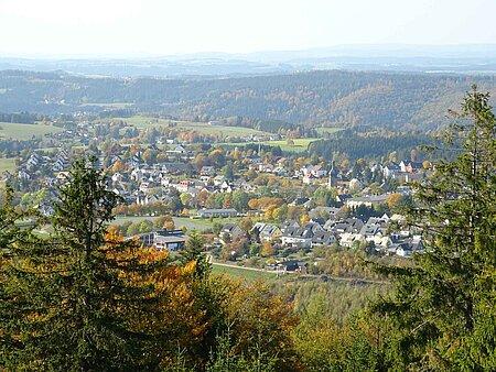 Blick auf Schwarzenbach am Wald