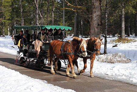Kutsch- und Planwagenfahrten im Oberallgäu